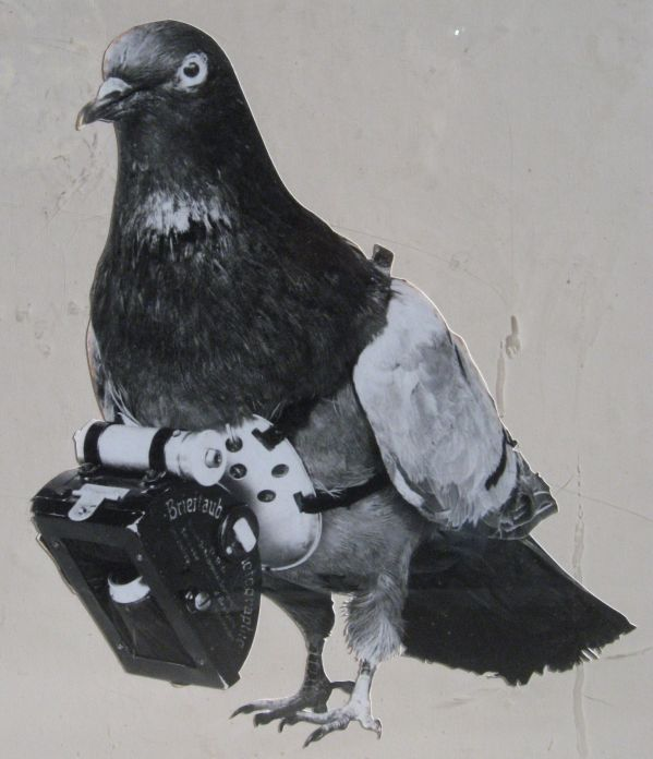 Dr_Julius_Neubronner__pigeon_camera_activated_by_a_timing_mechanism_1903
